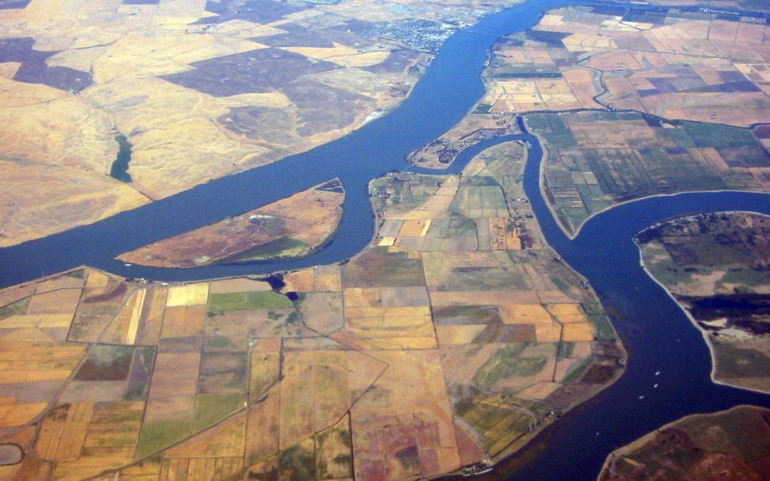 Open DAP – Delta Agricultural Production Model